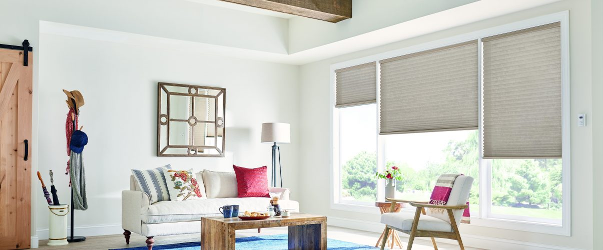 A nice living room, showcasing cellular blinds in the windows.