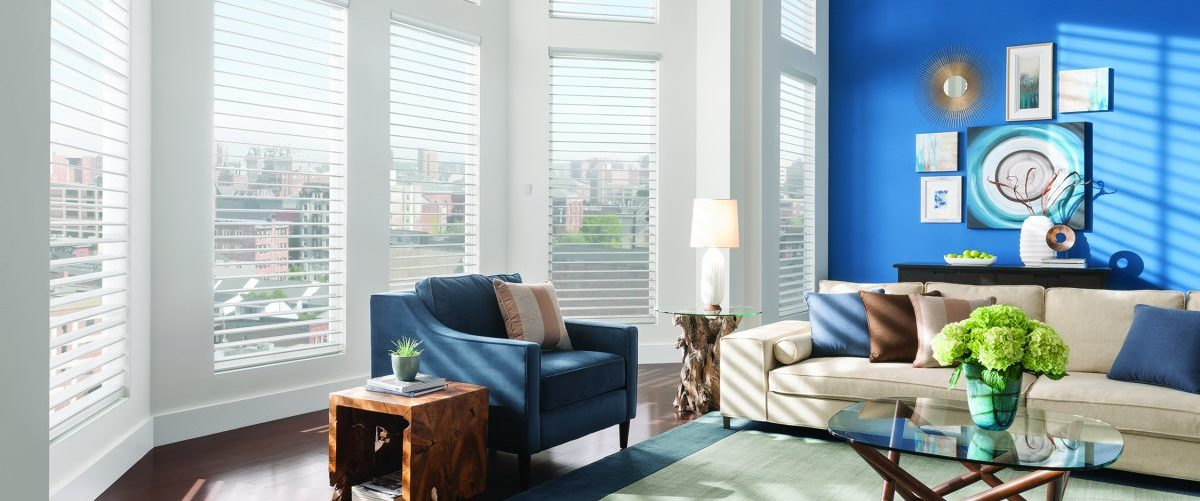 A living room with Sheer Blinds in the windows.